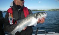 pêche en mer en irlande