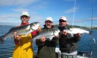 pêche bar irlande mer