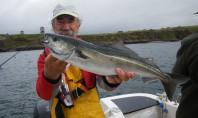Lieu en irlande pêche en mer