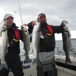 pêche bar irlande