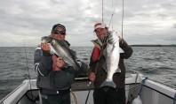 fich club pêche en mer en irlande